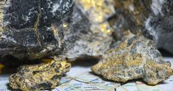 Seismic impact set to grow, says gold chief