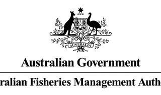 Pelagic fishery talks coming up