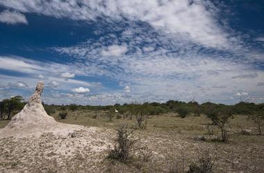 Transition time for Botswana Diamonds